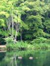 2007_0707karuizawa0010